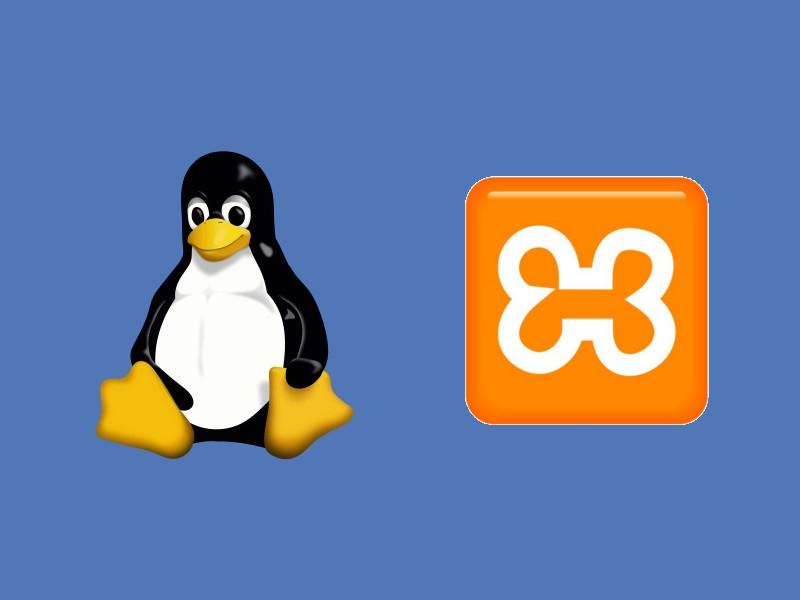 Access denied xampp linux